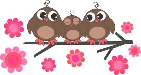 three sweet owls family