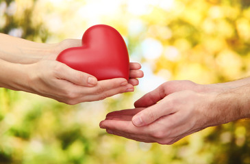 Fototapete - Red heart in woman and man hands, on green background