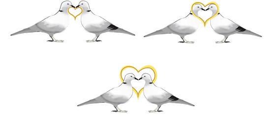 colombi