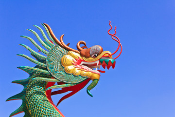 Dragon with a sky background