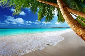 Fotomurales - beach at Prtaslin island, Seychelles
