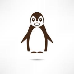 Surprised Penguin.