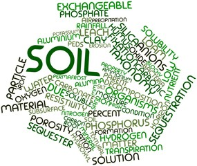 Word cloud for Soil