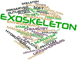 Word cloud for Exoskeleton
