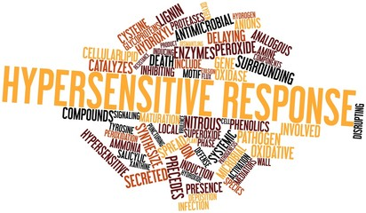 Word cloud for Hypersensitive response