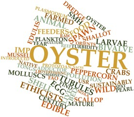 Word cloud for Oyster