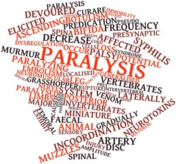 Word cloud for Paralysis
