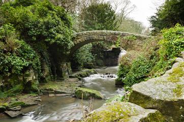 Jesmond Dene stone bridge