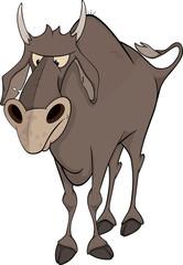 Bull. Cartoon