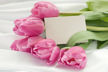 Pink tulips on white silk with card