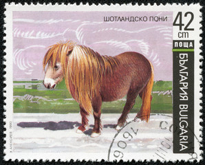 Stamp printed in BULGARIA shows image of a horse