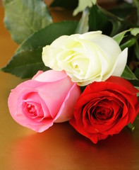 bouquet of colorful roses on a gold background