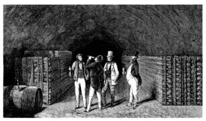 Wine Growing - Viticulture : Degustation - 19th century