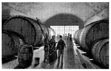 Wine Growing - Viticulture : Cave - 19th century