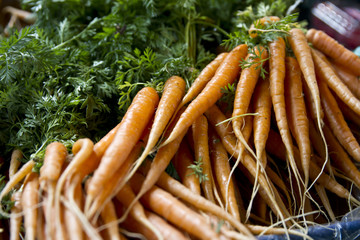 Fresh carrots from the Borough Market