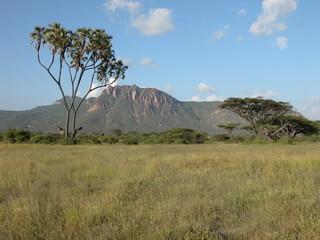 Paysage Kenya