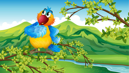 A parrot near the riverbank