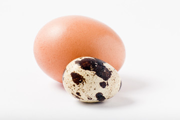 Chicken egg and quail egg