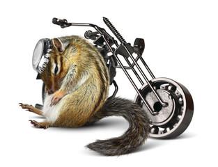 Fotomurales - Funny chipmunk biker with motorcycle