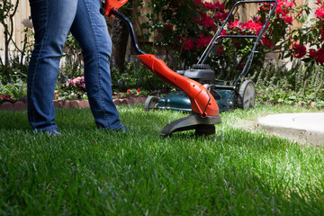 Trimming Lawn