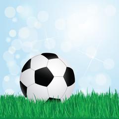 soccer on grass