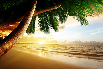 Wall Mural - sunrise on Caribbean beach