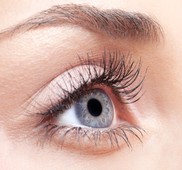 Woman eye