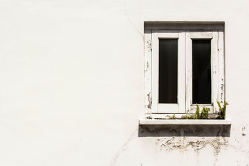 Background: Window shade on the rustic white wall