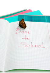 butterfly sits on notebooks