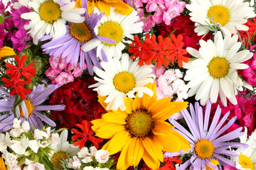 beautiful bouquet of bright  wildflowers, close up