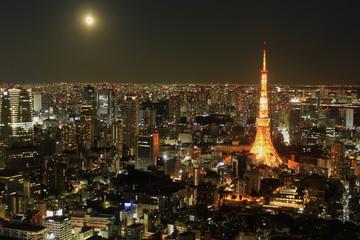 Tokyo Night View, Japan