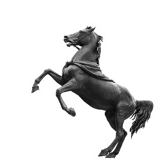 Isolated on white black horse sculpture