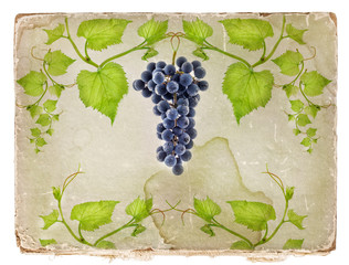 Old paper texture background, with grape and leaves