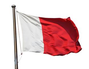 Flag of Dubai isolated over white background