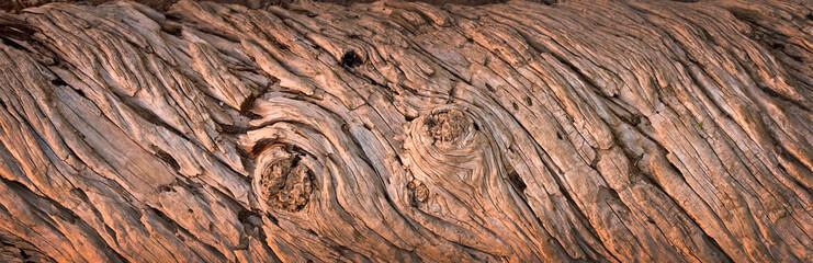 Texture de bois, panorama