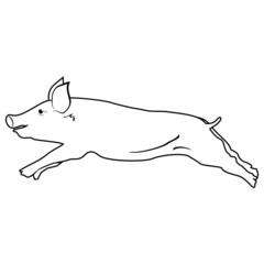 Pig symbol - vector