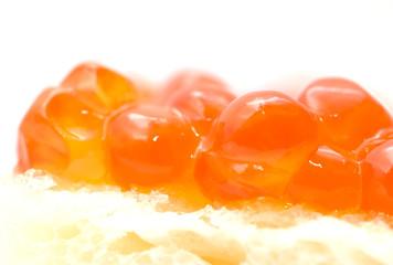 red caviar. macro