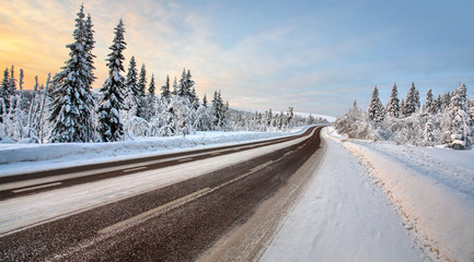 Country road in december