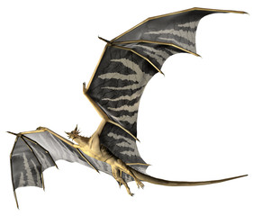 Spoed Fotobehang Draken Flying Dragon - Computer Artwork