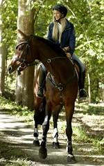 Young woman horse riding in the forest