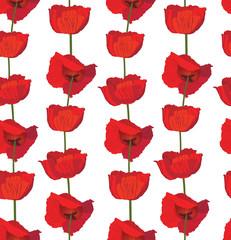 flower poppy seamless background. Elegant floral pattern.