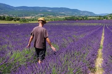 Lavendelfeld mit jungen Mann - lavender field and young man 01