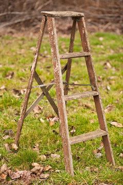 Old, weathered, wood ladder in a field of grass.