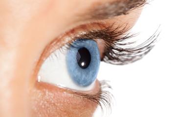 Woman's eye with long eyelashes