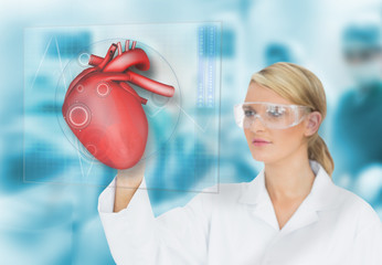 Doctor consulting heart diagram on touchscreen display
