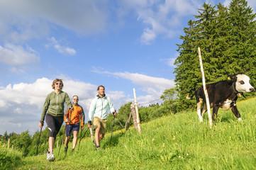 Fototapete - gemeinsame Walking-Tour