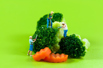 Figurine farmers harvesting broccoli