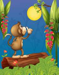 Poster Forest animals A monkey looking at the moon