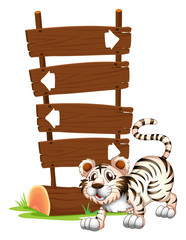 A tiger in a jumping position
