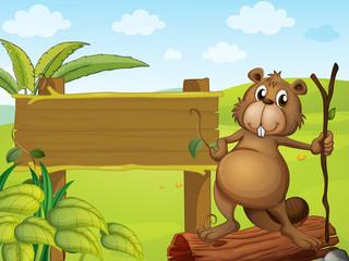 A beaver beside a sign board